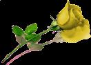 sticker_49618599_3