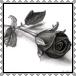 sticker_3341667_30550683