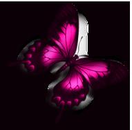 sticker_63662862_79
