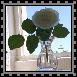 sticker_21920493_47510133