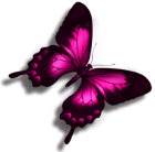 sticker_72503119_1058