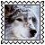 sticker_12807896_30120168