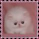 sticker_21920493_47510479