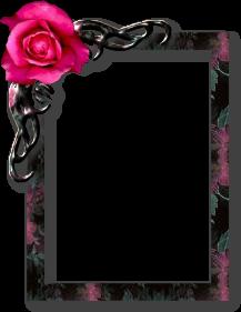 sticker_484685_19126020