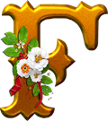 Klistremerker _71036258_117