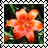 sticker_6317272_35034989
