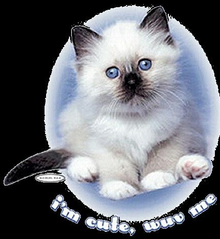 sticker_15728057_44083670