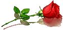 sticker_13624261_18839082