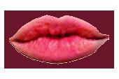 sticker_13833325_26607052