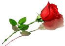 Sticker_3579898_11727746