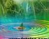 sticker_12903751_20079768