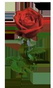 sticker_14996957_32746087