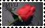 sticker_11980887_29150211