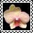 sticker_6317272_33567885