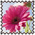 sticker_16974626_32031278