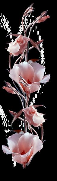 sticker_84902816_355