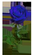 sticker_5357435_34851833