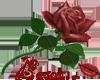 sticker_83289675_33