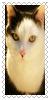 sticker_2500308_46836757