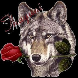 sticker_14238396_40043776