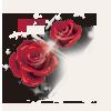 sticker_12526132_47546776