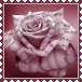 sticker_20229122_45883248
