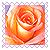 sticker_27288588_47587680