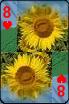 sticker_21920493_47510129