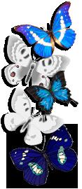sticker_22029189_35629575