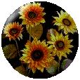 sticker_22495124_34612968