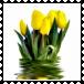 sticker_17637054_32962156
