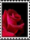 sticker_37077675_58