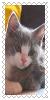 sticker_2500308_37693534