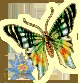 sticker_255767_24043
