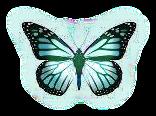 sticker_1576876_7007375