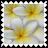 sticker_19863527_33548311