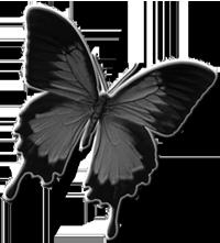 sticker_16082006_36346764