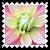 sticker_16974626_32031294