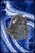 sticker_16465242_47533470