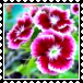 sticker_13786447_47430557