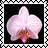 sticker_6317272_35026709