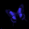 sticker_72503119_1023
