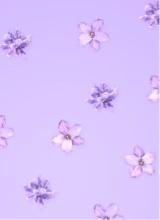 Blossy