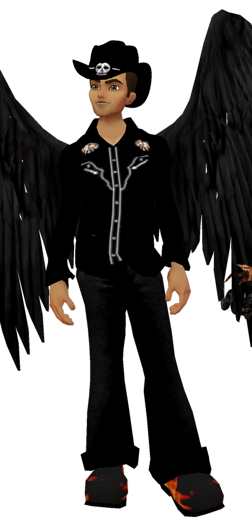heavenlycowboy